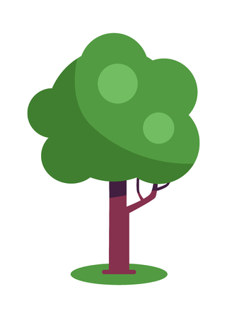 Tree with massive trunk and green leaves vector illustration isolated on white background. Exotic plant flat design cartoon style with branch Illustration