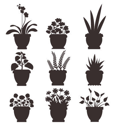 House plants in pots collection, room herbs set with flowers and leaves, silhouettes colorless icons vector illustration isolated on white background