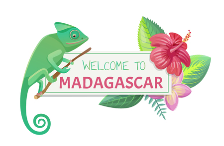 Welcome to Madagascar poster with title and lizard, leaves and flower, banner and headline isolated on vector illustration