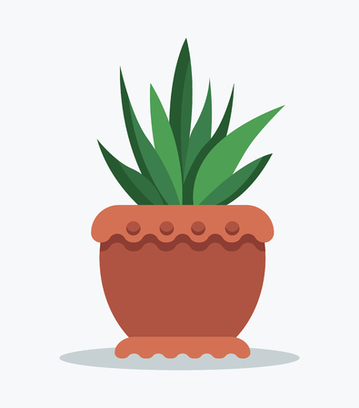 House flowerpot tropical ananas in clay pot for room decor. Indoor plant grown in big pot on windowsill. Natural design decoration vector illustration