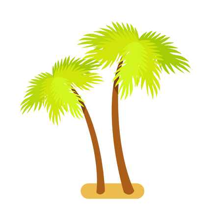 Tropical palm trees collection, green exotic plants with broad leaves growing in sand, symbols of summertime vector illustration isolated on white Illusztráció