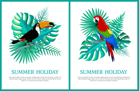 Summer holiday posters set of banners and text sample, collection birds, summertime fest, parrot and toucan vector illustration isolated on white