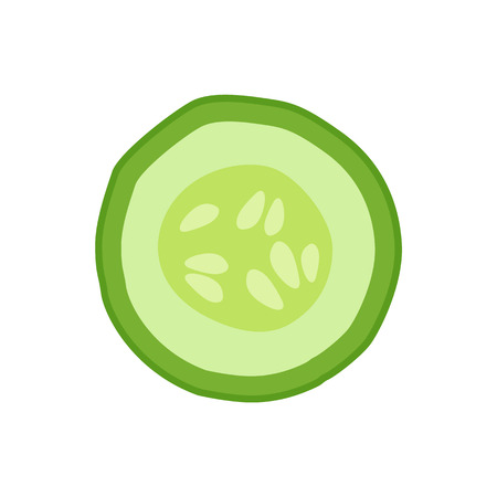 Ripe cucumber round slice as ingredient for detox. Juicy fresh vegetable pice with small seeds inside and green skin isolated vector illustration.