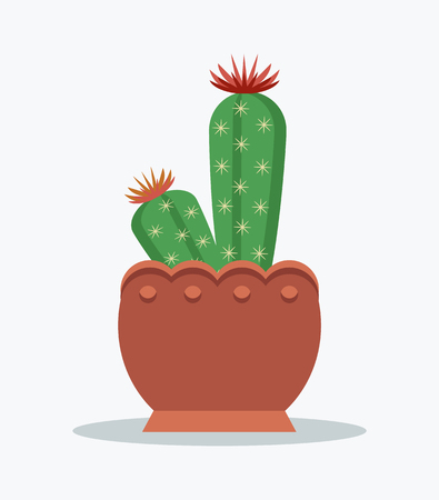 Cactus and flowers in bloom, plant with thorns, flourishing blossoms top, flourish item in brown pot, vector illustration isolated on white