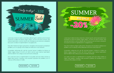 Summer sale with 35 and 30 percent off promotional emblems on web posters. Summertime tropical plants leaves seasonal vector online site pages set Ilustrace