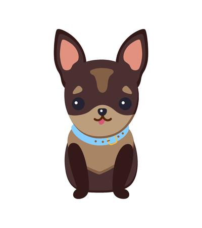 Chiot chihuahua avec illustration vectorielle de collier