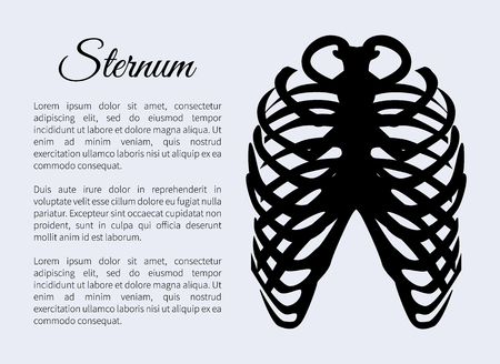 Sternum bones poster with text sample title, banner part of human organism skeletal system, headline vector illustration isolated on blue background Illustration