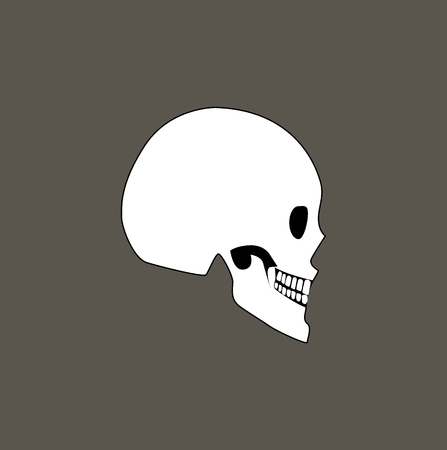 Skull of human profile view part body with different bones types as frontal, parietal and spheroid, internal framework isolated on vector illustration Stock Vector - 105604026