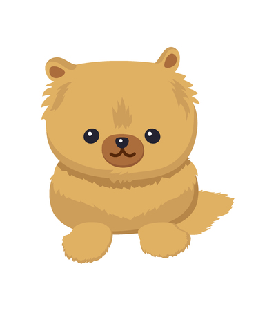 Dwarf Spitz picture, poster with animal with fluffy fur and cute face, pet with fun expression, doggy vector illustration isolated