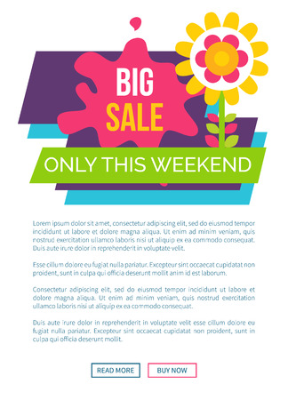 Only Weekend Big Sale Promo Label with Blooming Illustration