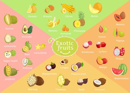 Egzotyczne owoce kolekcja kolor ilustracji wektorowych