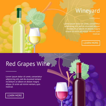 Wineyard and red grapes wine Internet banners set. Delicious exquisite red and white vino in bottles and glasses vector illustrations on web pages