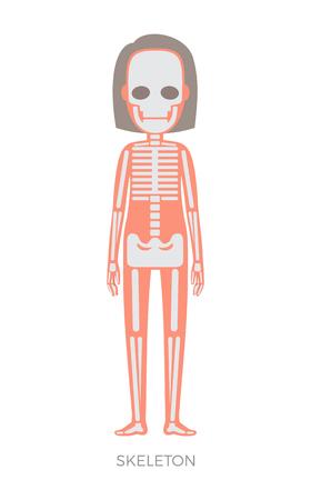Skelettkörperteil bildet die tragende Struktur des Organismus, Fleisch und Knochen anatomische Frauendarstellungsschlagzeile, isoliert auf Vektorillustration Vektorgrafik