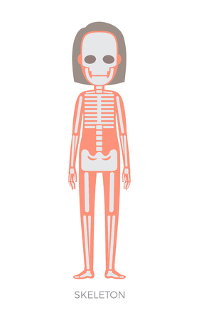 Skeleton body part forms supporting structure of organism, flesh and bones anatomical woman representation headline, isolated on vector illustration