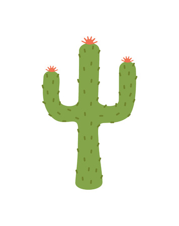 Plant image closeup, cactus with flourishing flowers on top and thorns all around, object vector illustration isolated on white background 版權商用圖片 - 112062706