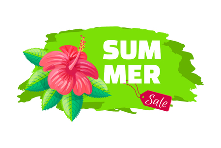 Summer supper price emblem exotic pink flower on brush stroke, advertisement sticker with tropical blossom, discount sale concept label vector blooming buds