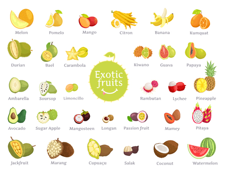 Délicieux fruits exotiques pleins de vitamines grand ensemble