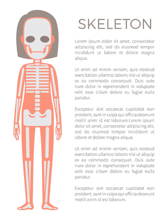 Skeleton that forms supportive structure of human organism, poster woman body and text sample with headline, vector illustration isolated on white Illustration