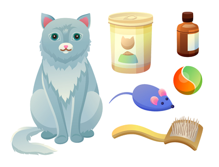 Set of objects for taking care about feline. Food for cat in metal package, flea remedy, mouse toy and ball, combing brush, fluffy kitten vector isolated