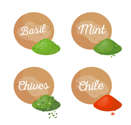 Basil and mint spices set chives and chile powder, plant flavouring dry aromatic herb, seasoning organic cooking condiment vector illustration isolated