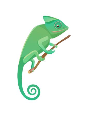 Lagarto sentado en la rama de madera, mascota doméstica de color verde con cola larga, reptil lacertiano con vector de piel verde áspera, escamosa o espinosa aislado
