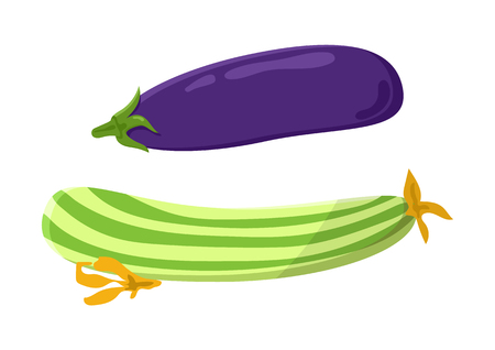 Marrow and eggplant collection, vegetarian food set, courgette or aubergine, vegan meal cartoon vector illustration isolated on white background. Ilustracja