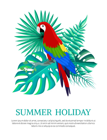 Summer holiday text poster with headline and parrot leaves of monstera royal fern, summertime vector illustration isolated on white background 向量圖像