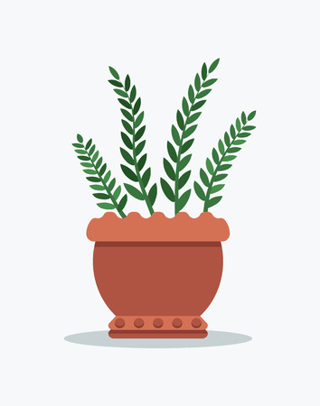Rosemary planted in flower pot, plant of green color with leaves, shade and greenery, clay vase vector illustration isolated on white background Illustration