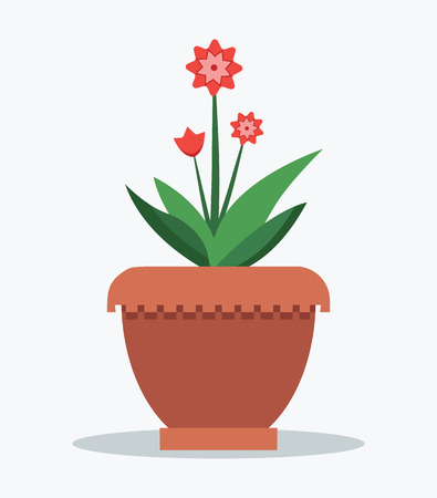 Mandevilla flower and leaves, set of pink blossoms, leaf green color, potted plant vector illustration, isolated on white, houseplant in clay pot