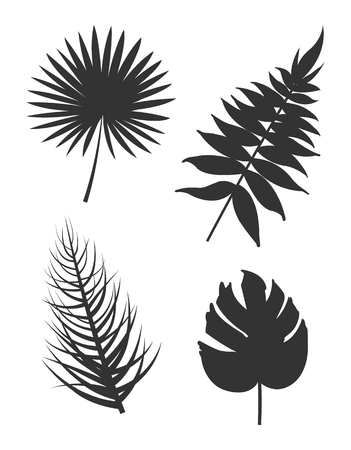 Leaf collection silhouette set of plants monstera deliciosa branch and royal fern tropical herbs vector illustration isolated on white background Illustration