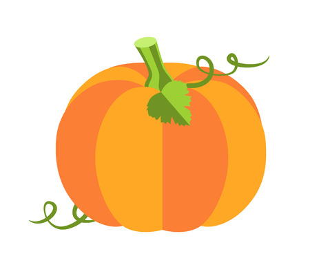 Pumpkin with leaves, sweet ripe vegetable of autumn season, princess party and attribute, cartoon vector illustration isolated on white background.