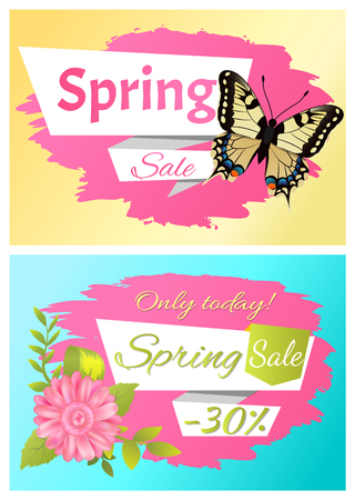 Set posters butterfly and flower only today spring sale. Price off best offer discount collections, yellow black color insect vector of pink daisy
