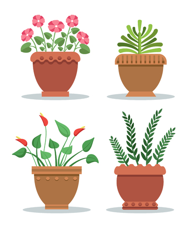 Indoor plants leafy with blossom in clay pots set. Flowers and blossoms vase for house decoration. Room natural adornment vector illustrations.