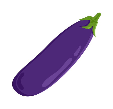 Eggplant vegetable food meal, aubergine of purple color, vegetarianorganic product object, flat vector illustration isolated on white background. Ilustração