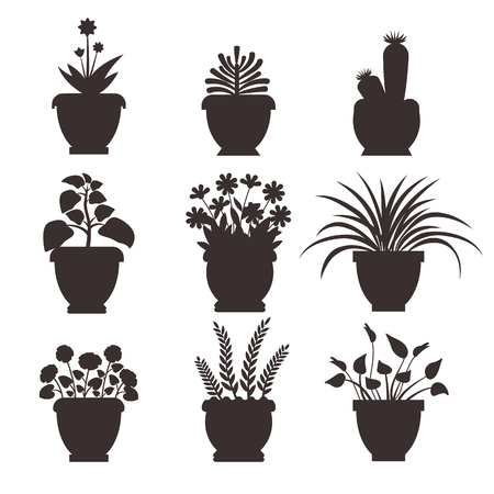Ophiopogon collection silhouette, colorless icons of flowers and pots, plants in blossom, flourish vector illustration, isolated on white background