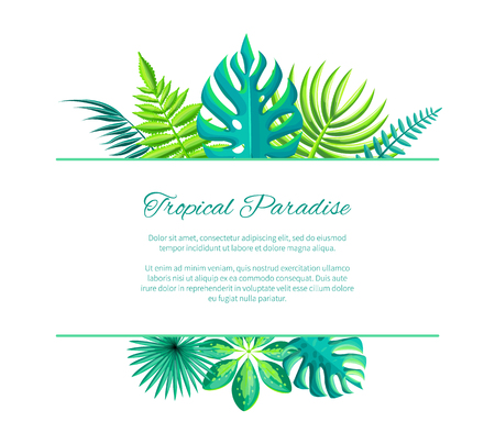 Tropical paradise adverisement poster with place for text, exotic palm tree leaves and rextangular spare place for your info, vector illustration isolated on white Çizim