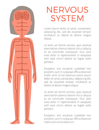 Nervous System Poster and Text Vector Illustration Zdjęcie Seryjne - 109356908