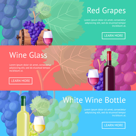 Red and White Wine Promotional Internet Pages Set
