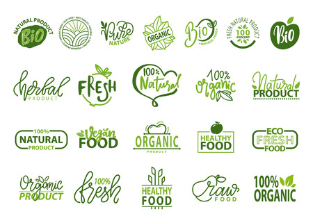 Natural Bio and Organic Food Vector Illustration