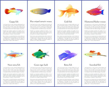 Set of Aquarium Fishes Color Vector Illustrations