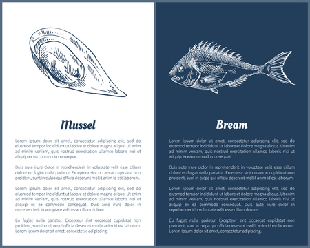 Mussel and Bream Fish Set Vector Illustration