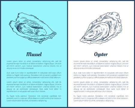 Mussel and Oyster Vector Double Color Graphic 写真素材 - 109662204