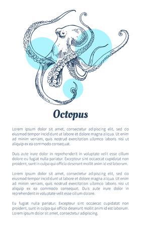Octopus Marine Creature Poster in Sketch Style