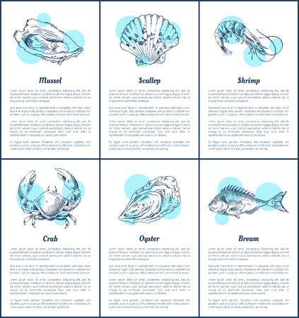 Illustration vectorielle d'affiches de pétoncles et de mollusques