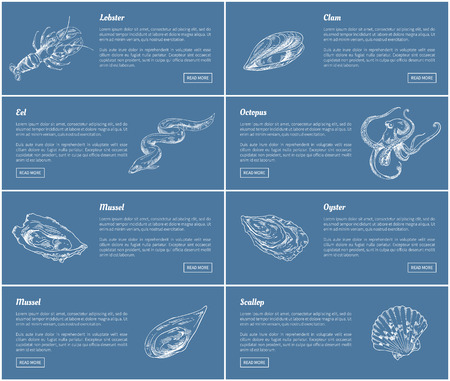 Scallop and Oyster Posters Set Vector Illustration