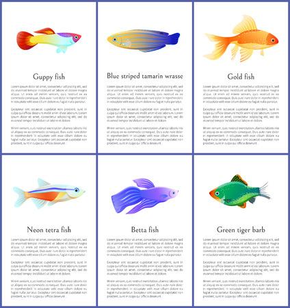 Set of Saltwater Inhabitant Vector Illustrations