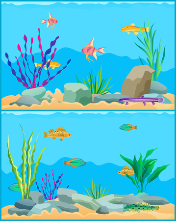 Fish Underwater Scape Set Vector Illustration