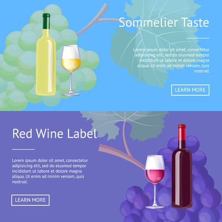 Sommelier Taste Red Wine Label Set of Web Posters 向量圖像