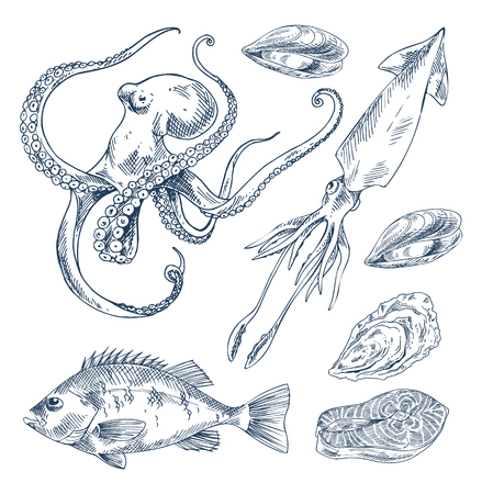 Fish and Marine Creatures as Seafood Poster 写真素材 - 110476662