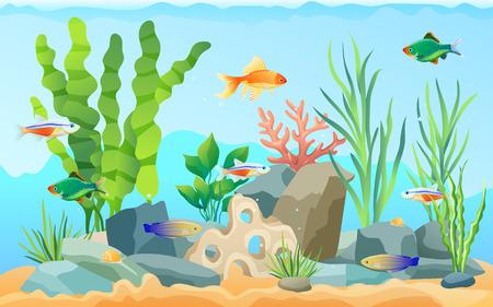 Acuario dibujado a mano con peces y algas. Peces de colores y tetra neón, lengüeta de tigre verde y napoleón tamiran rayado azul entre plantas submarinas Ilustración de vector